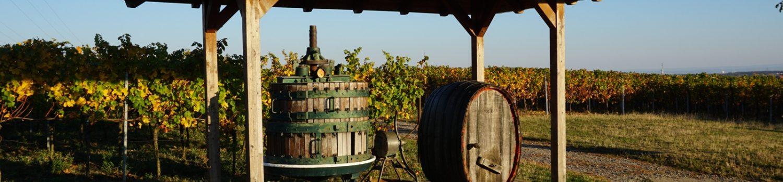 Alte Weinkelter auf dem Nußdorfer Weinerlebnispfad